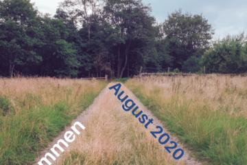 Ankommen | Botschaft August 2020 | Iris Ludolf | Friedensberaterin